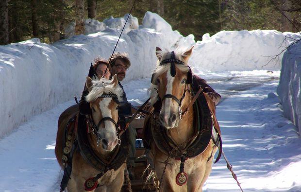 pferde-abenteuer-gams-bei-hieflau-romantisch