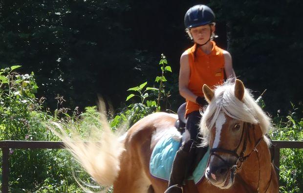 pferde-abenteuer-gams-bei-hieflau-training