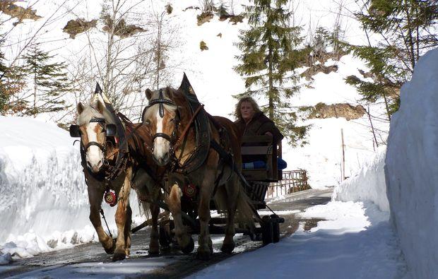 pferde-abenteuer-gams-bei-hieflau-winter