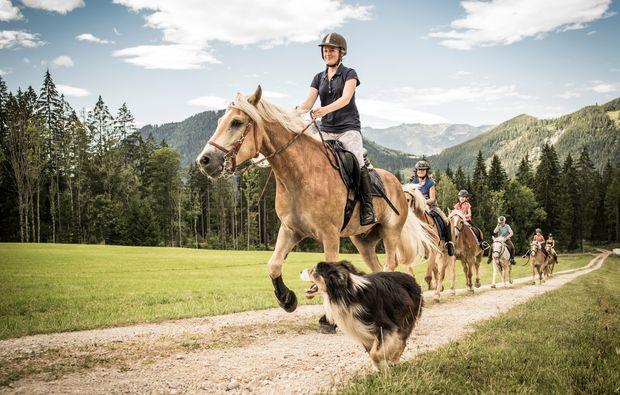 pferde-abenteuer-gams-bei-hieflau-wochenende