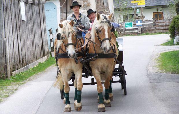 romantische-pferdeschlittenfahrt-fuer-zwei-wildalpen-erlebnis