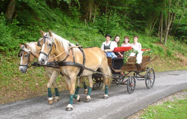 romantische-pferdeschlittenfahrt-fuer-zwei-wildalpen-romantisch