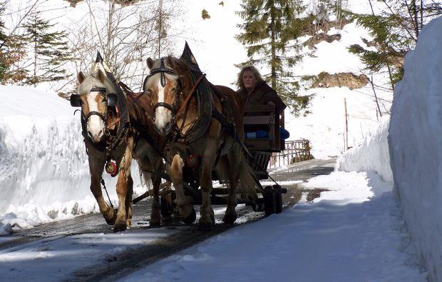 romantische-pferdeschlittenfahrt-fuer-zwei-wildalpen-winter