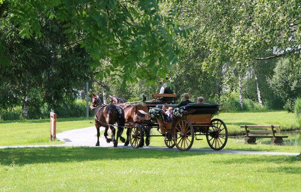 romantische-pferdeschlittenfahrt-fuer-zwei-mittersill-bg2