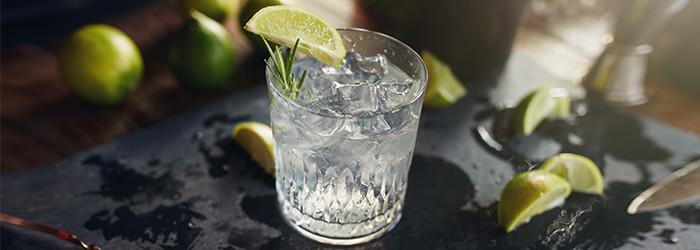 Dégustation de gin