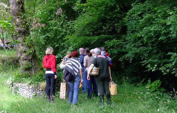 kraeuterwanderung-monteggio-bg3