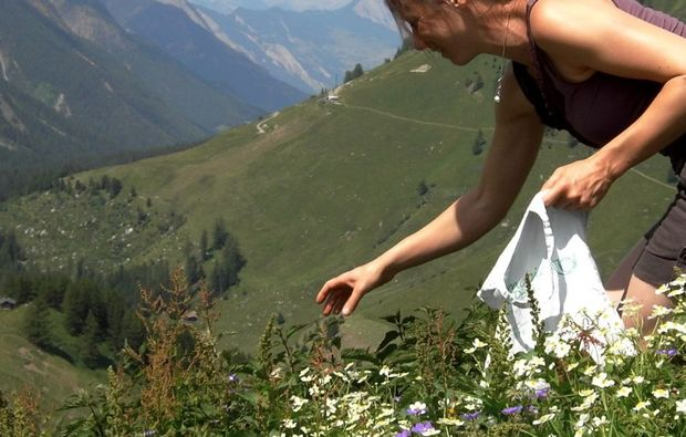 kraeuterwanderung-la-tzoumaz-bg1