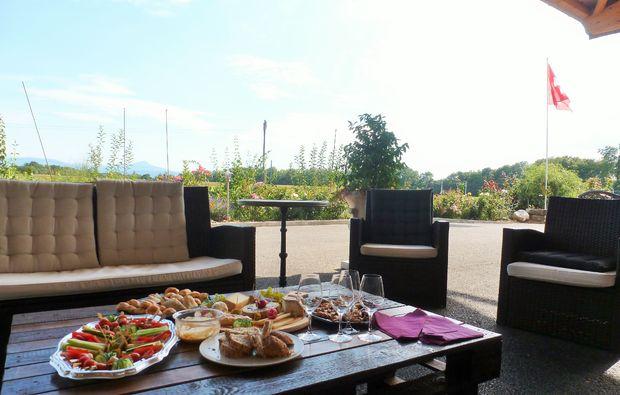 weindegustation-chavronay-bg5