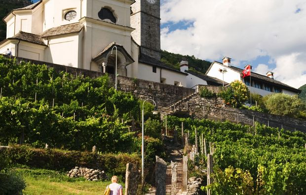 ascona-weindegustation1499701953