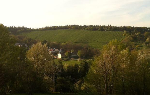 weindegustation-gernsbach-deutschland