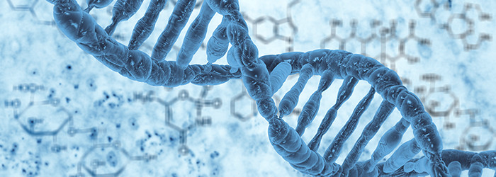 DNA - Ahnenforschung