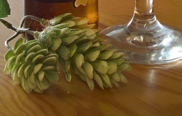 stabio-bierbrauen-bierdegustation