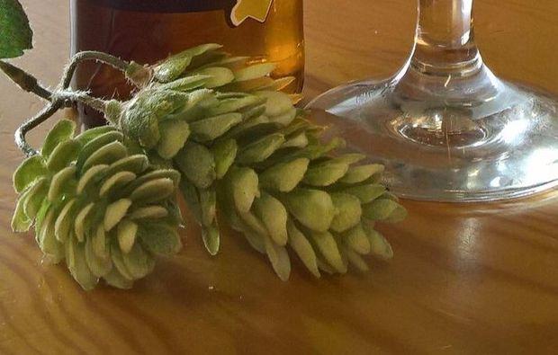 bierdegustation-stabio