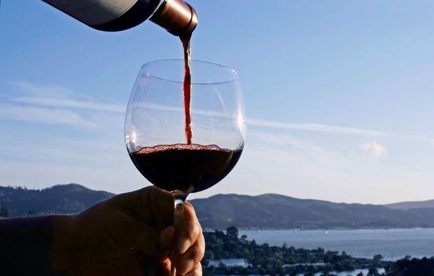 weinseminar-basel-wein-glas