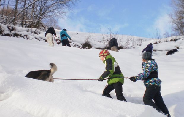 husky-tour-nueziders-snow