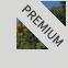 Premium Partner