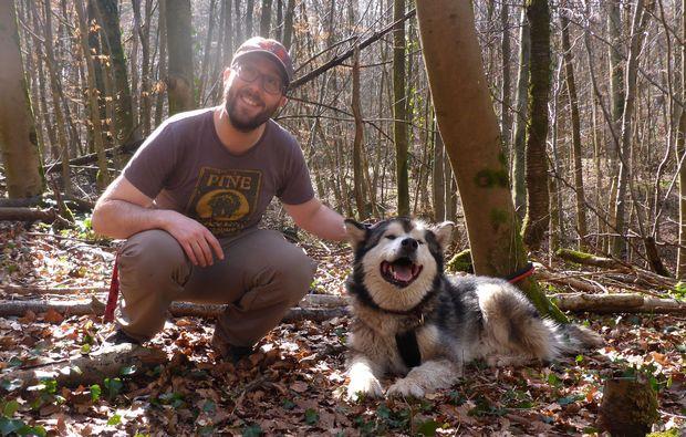 husky-trekking-siersburg-outdoor-natur
