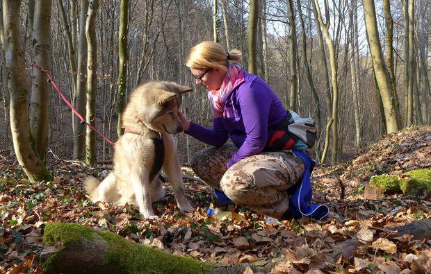 husky-trekking-siersburg-spass