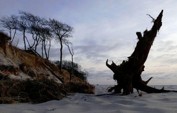 fototour-prerow-sand