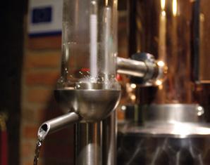brennseminar-weserberg-reileifzen