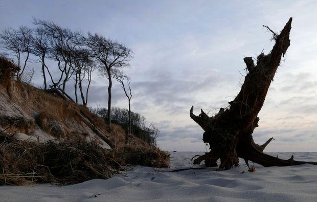 fotokurs-prerow-sand