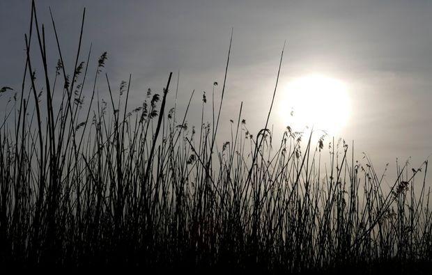 fotokurs-prerow-sun