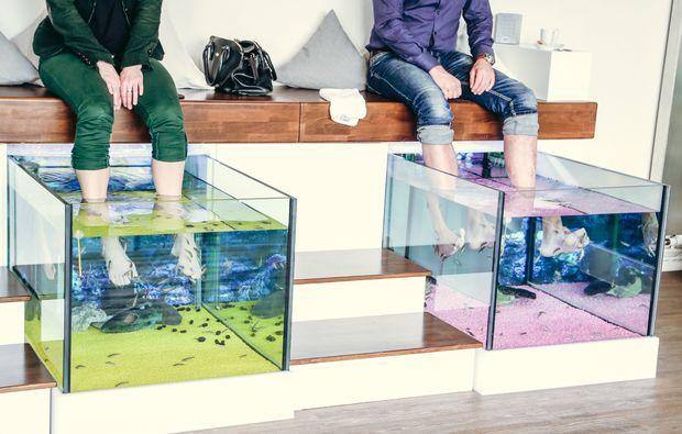 fisch-pedikuere-hannover-behandlung