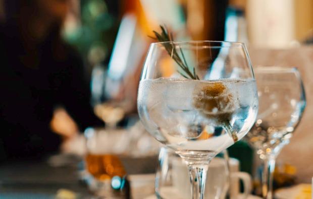 gin-tasting-zuhause-bg6