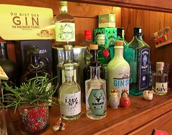 Gin Kochkurs Bodenseevent Gin Kockurs, inkl. Gin und alkoholfreien Getränken