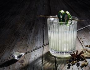 Gin Tasting Augsburg