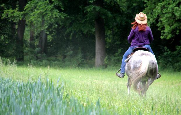 wander-western-reiten