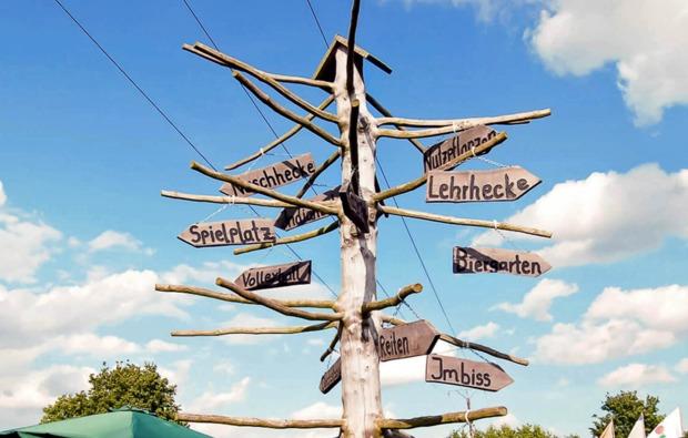 aussergewoehnlich-uebernachten-zwischen-basdorf-und-voehl-bg5