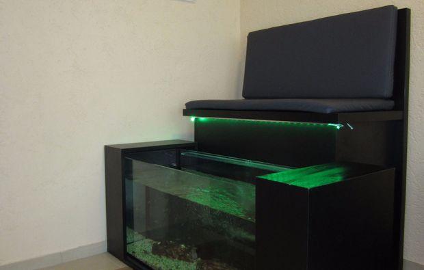 fisch-pedikuere-essen-relaxing