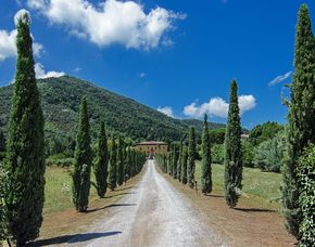 Bella Italia Lucca