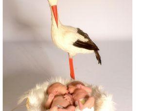 kinder-fotoshooting-trostberg-zwillinge-mit-storch