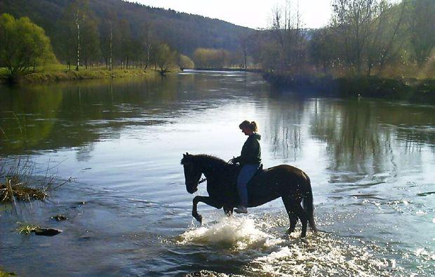 zauberhafte-unterkuenfte-frankenroda-horse-natur