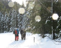 schneeschuh-wanderung-erlebnis