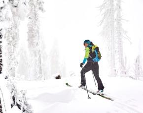 Schneeschuh-Wanderung Bischofsmais