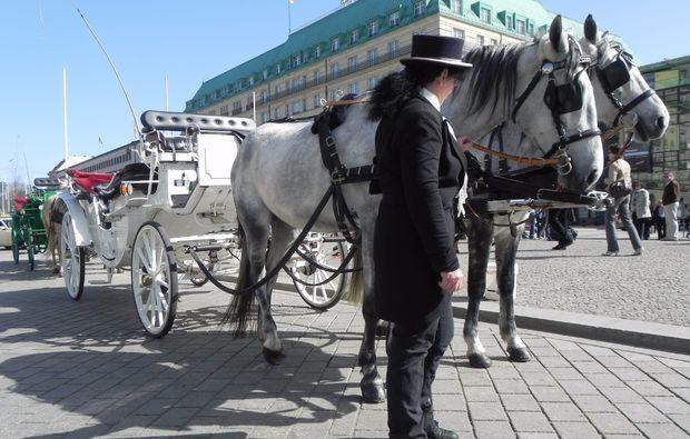 hochzeitskutschfahrt-berlin-horses