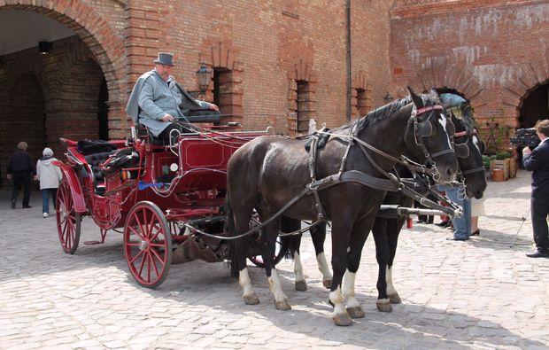 hochzeitskutschfahrt-berlin-kutsche