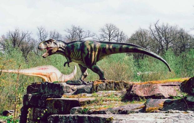 sleeperoo-uebernachtung-ernzen-dinosaurier