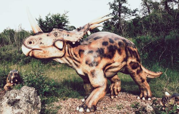 sleeperoo-uebernachtung-ernzen-triceratops