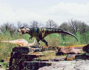 Außergewöhnlich Übernachten im sleeperoo Cube - 1 ÜN (Preis B - Mo-Do) - Dinosaurierpark Teufelsschlucht Ernzen - Ernzen im sleeperoo Cube - inklusive Chillbox - Dinosaurierpark Teufelsschlucht Ernzen