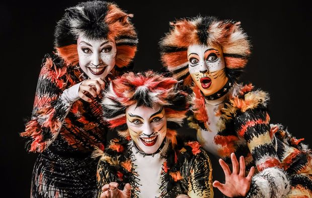 musical-dinner-korschenbroich-liedberg-cats