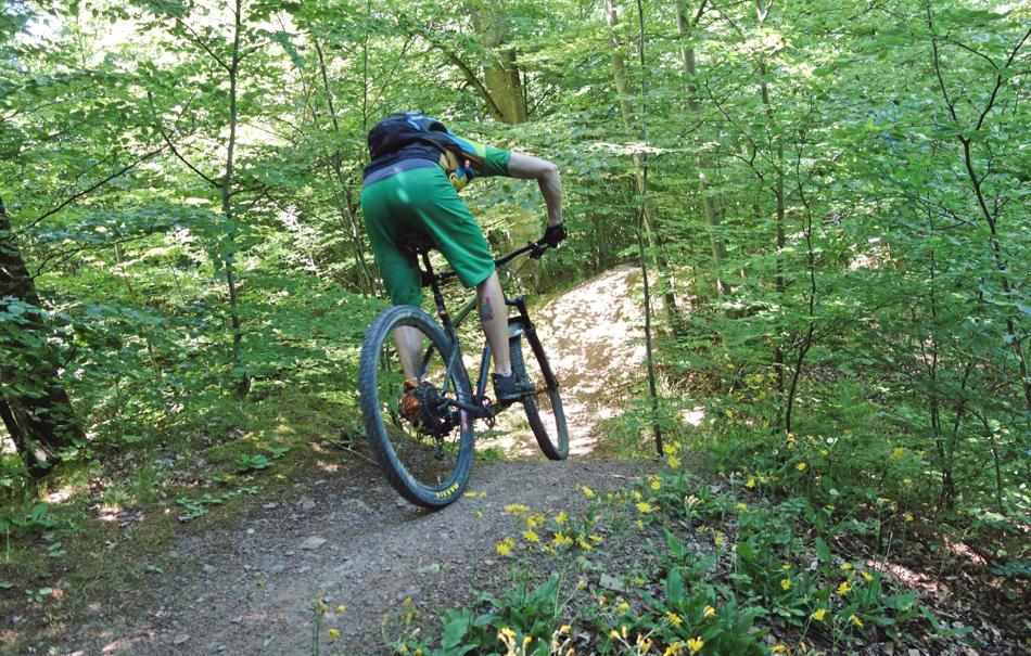 mountainbike-grundkurs-basic-advanced-winterberg-bg1