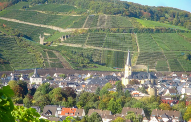 weinbergwanderung-ahrweiler-bg7