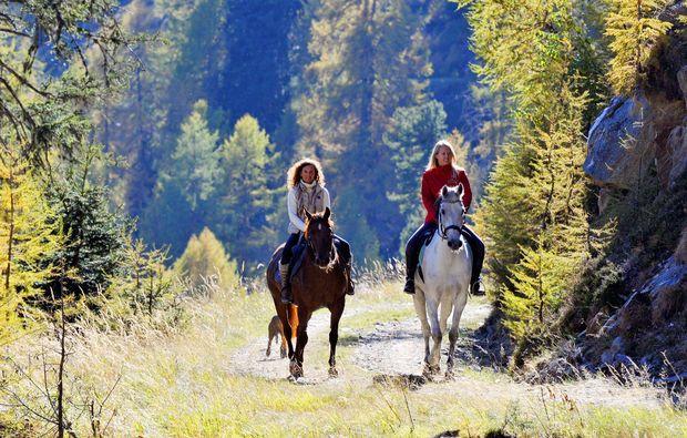 aktivurlaub-penk-pferden