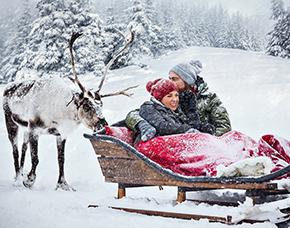 Rentierschlittenfahrt Lappland 1 Pax - Arvidsjaur Rentierschlittenfahrt - Ca. 3-4 Stunden