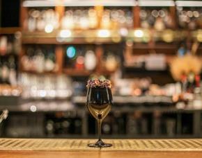 Gin Tasting Wien Verkostung von bis zu 7 verschiedenen Gins und 6 verschiedenen Tonics