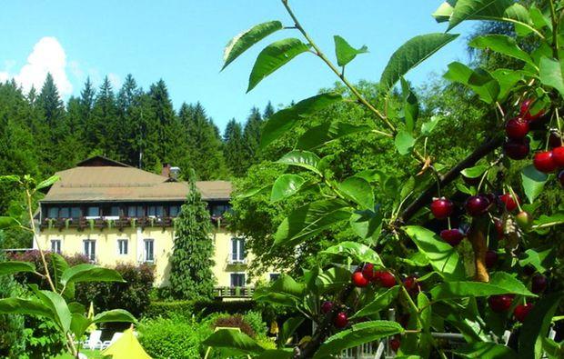 schlemmen-traeumen-koetschach-mauthen-hotel